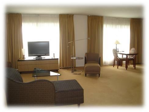 Rideaux pour un hôtel de Roissy